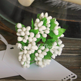 Bouquet de baies blanches