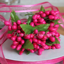 Bouquet de baies fuchsia
