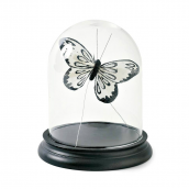 Globe verre socle bois noir