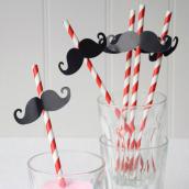 Pailles jolies moustaches - Lot de 12