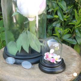 Petit globe verre socle bois noir