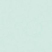 Serviettes papier dentelle vert menthe - Lot de 15