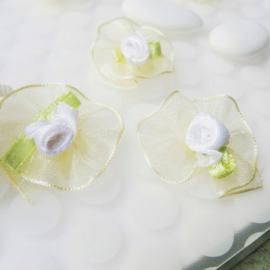 12 mini roses ruban organza beige et fleurs blanches