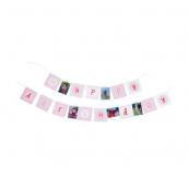 Guirlande de fanions Happy Birthday - 4 m et pinces roses