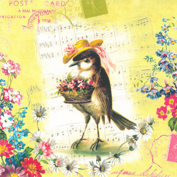 Serviettes papier romance bird - Lot de 20