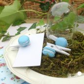 Mini pinces macaron bleu - Lot de 8
