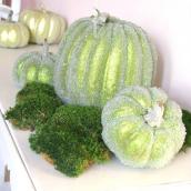Citrouille paillettes verte - XL