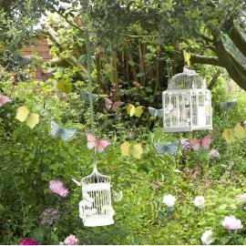 Gobelets et papillons féerie magic