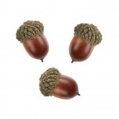 Glands d'automne