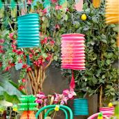 Lampions fiesta tropical