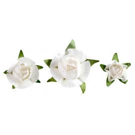Confettis fleurettes blanches